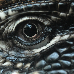 Eye Of The Reptile