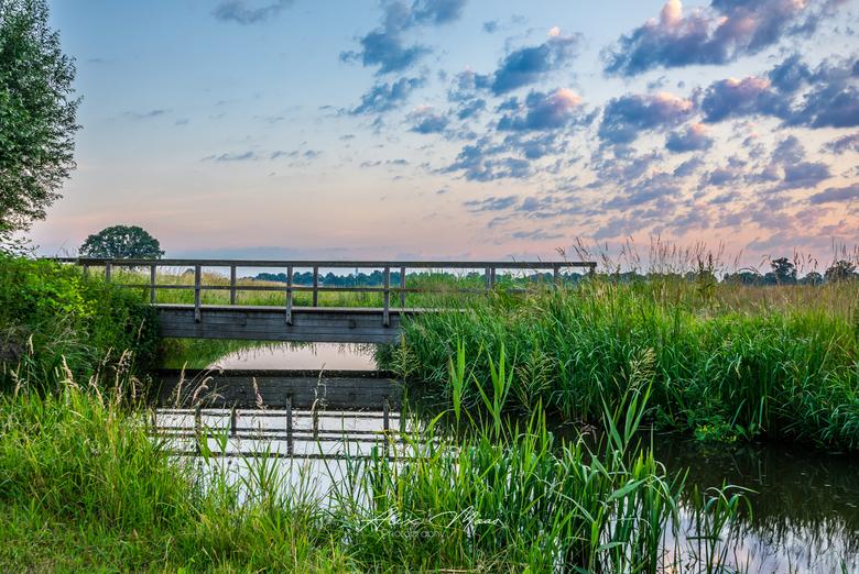 The Bridge - Zonsopgang rond half 6 in natuurgebied bij Berkendonk, in Helmond