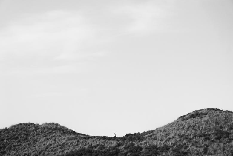 Zeeland - Hardloper - Hardloper in de duinen van Dishoek, Zeeland.