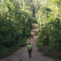 Suriname - Veldwerk