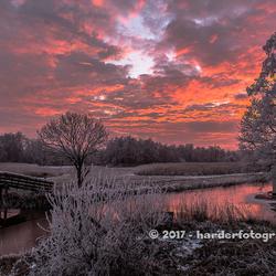 Gekleurde lucht in winterwonderland