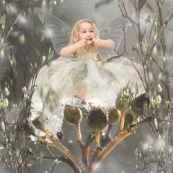 funny fairy!