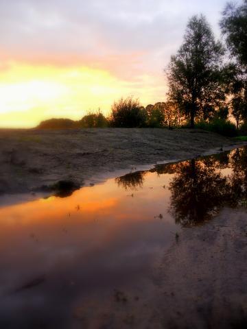 reflection of nature - uit de oude doos, mijn eerste foto wie ik gemaakt heb met mijn Canon 350D!