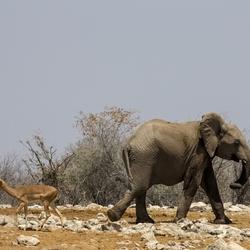Namibië 149