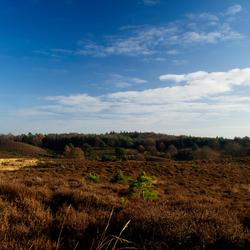 view on posbank