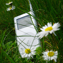 Ipod in gras
