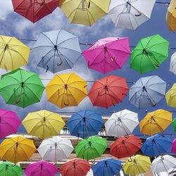 Paraplu's in Bastogne