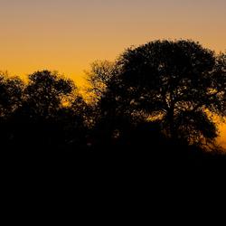 Zonsondergang ...