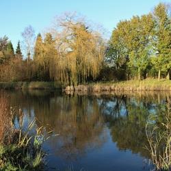 26112015 Park de Nieuweling in Duiven