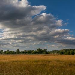weidelandschap met wolken