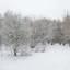 Sneeuw in België (2)