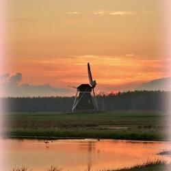 Natuurgebied hoeksmeer.
