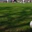 Loopvoetbal toernooi