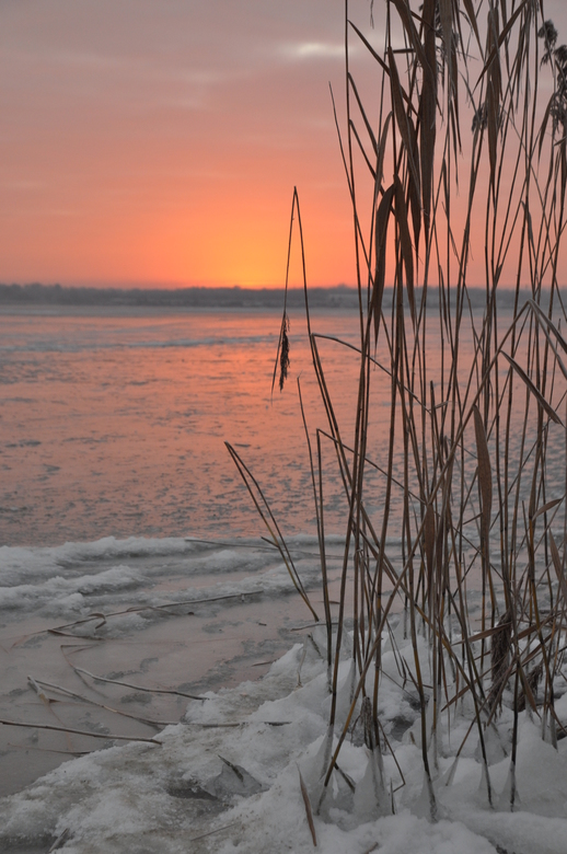 Vorst en opkomende zon - Een bevroren Veluwemeer met een prachtige opkomende zon.