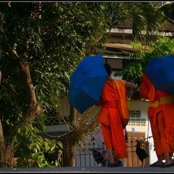 LAOS Monikken