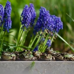 Samen genieten in de lentezon.