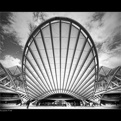 Lines of Calatrava [2]