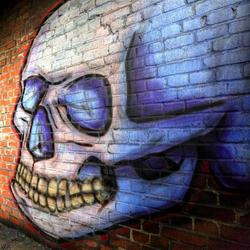 Skullhead - HDR