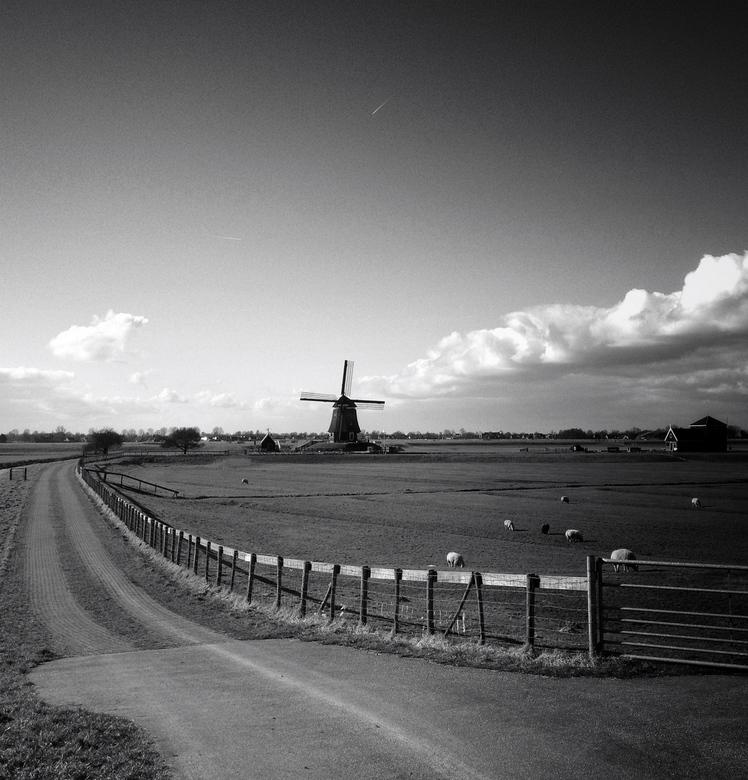 Naar de molen - Heerlijk om door Nederland te toeren. iPhone fotografie.