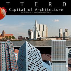 Rotterdam 29 collage