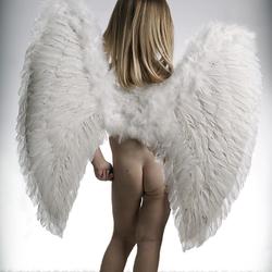 B engel