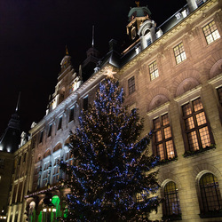 Kerstboom stadhuis Rotterdam