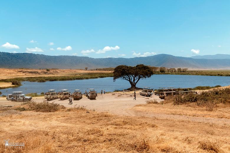 Ngorongoro-krater, Tanzania - Tijdens een safari in Tanzania daalden we heel vroeg af in de Ngorongoro-krater om wildlife te spotten. <br /> Rond een