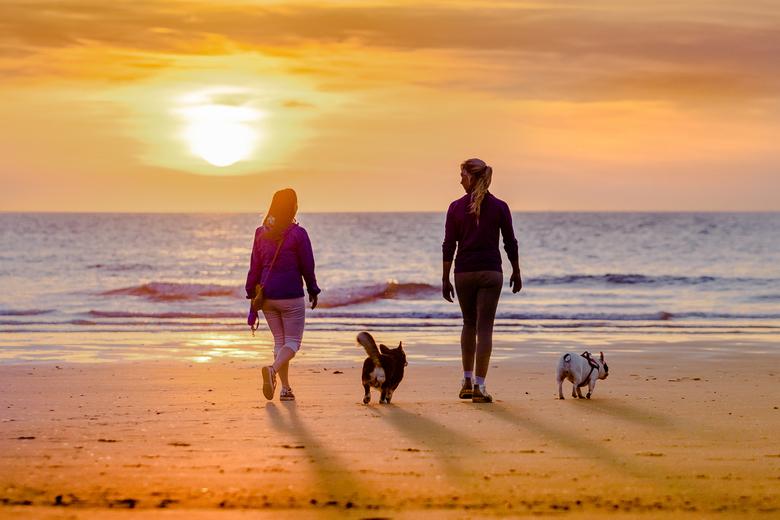 sunset walk -
