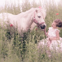 a little girl and her pony