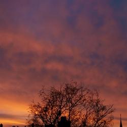 ochtend-rood