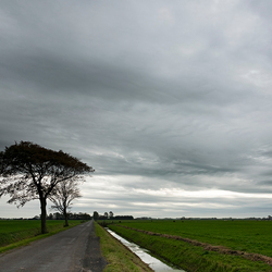 Landschap in Friesland
