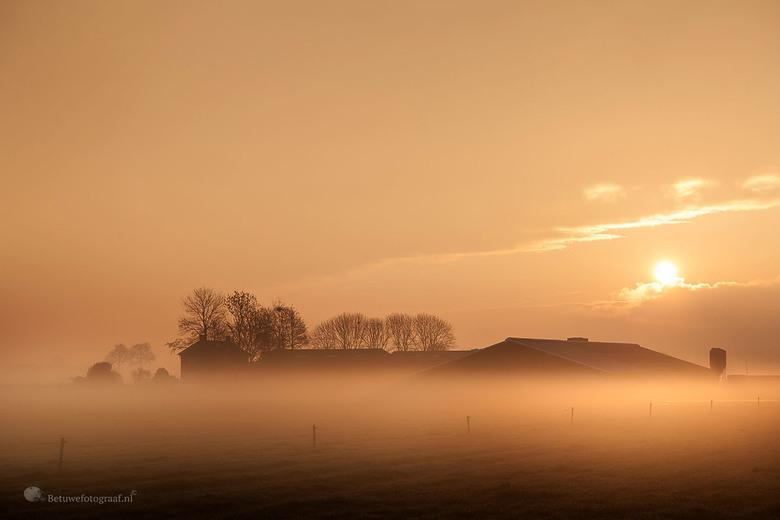 Mistige zonsopkomst vandaag in de polder ( boerderij )