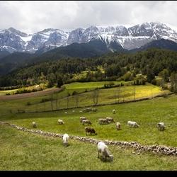 Pyreneeën 16