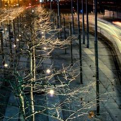 Nachtelijke beweging