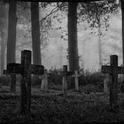 Bedelaarskerkhof in de mist