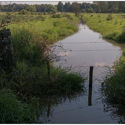 Onze Limburgse Natuur