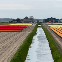 Kop van Noord Holland