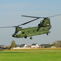 Chinook D-664