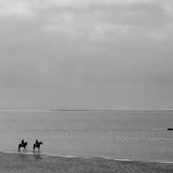 Paardrijden langs de vloedlijn