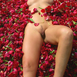 Tulpenbed