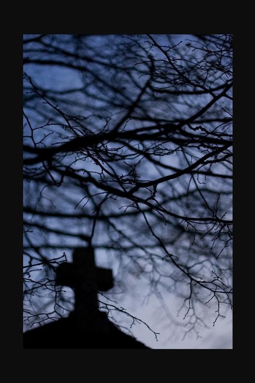 Darkness - Heb hier geprobeerd door gebruik van onscherpte een koel,donker en zelfs enigzins luguber beeld te creeëren.