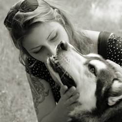kisses for the dog