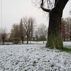 De eerste sneeuw in Vlaanderen