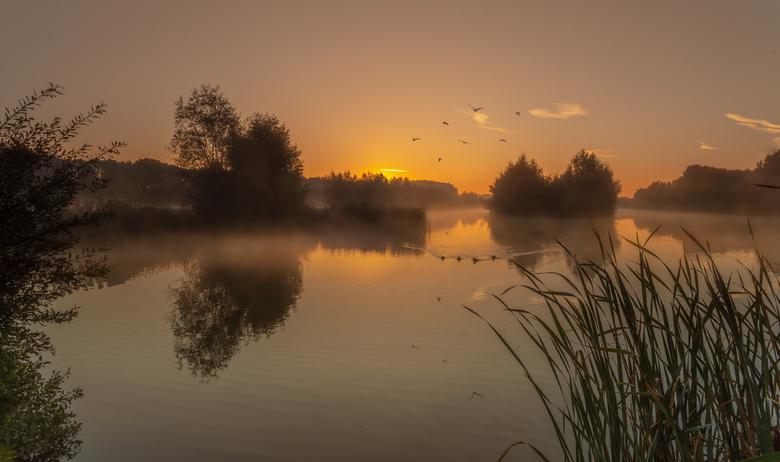 een heerlijke rustige ochtend - een heerlijke kalme rustige ochtend, met niets dan het geluid van de vogels. Dit mooie natuurgebied ligt vlakbij mijn