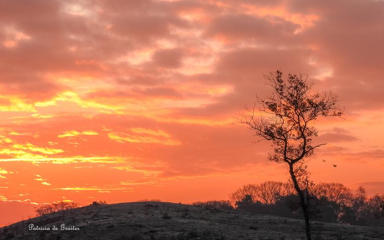 Sunrise - Iedere keer weer is het genieten wanneer je vroeg op pad bent en getuigen mag zijn van de zonsopkomst!