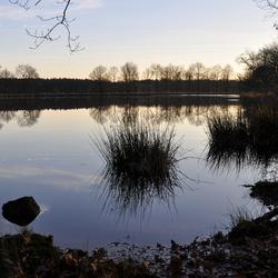 Dwingelerveld 3 2014
