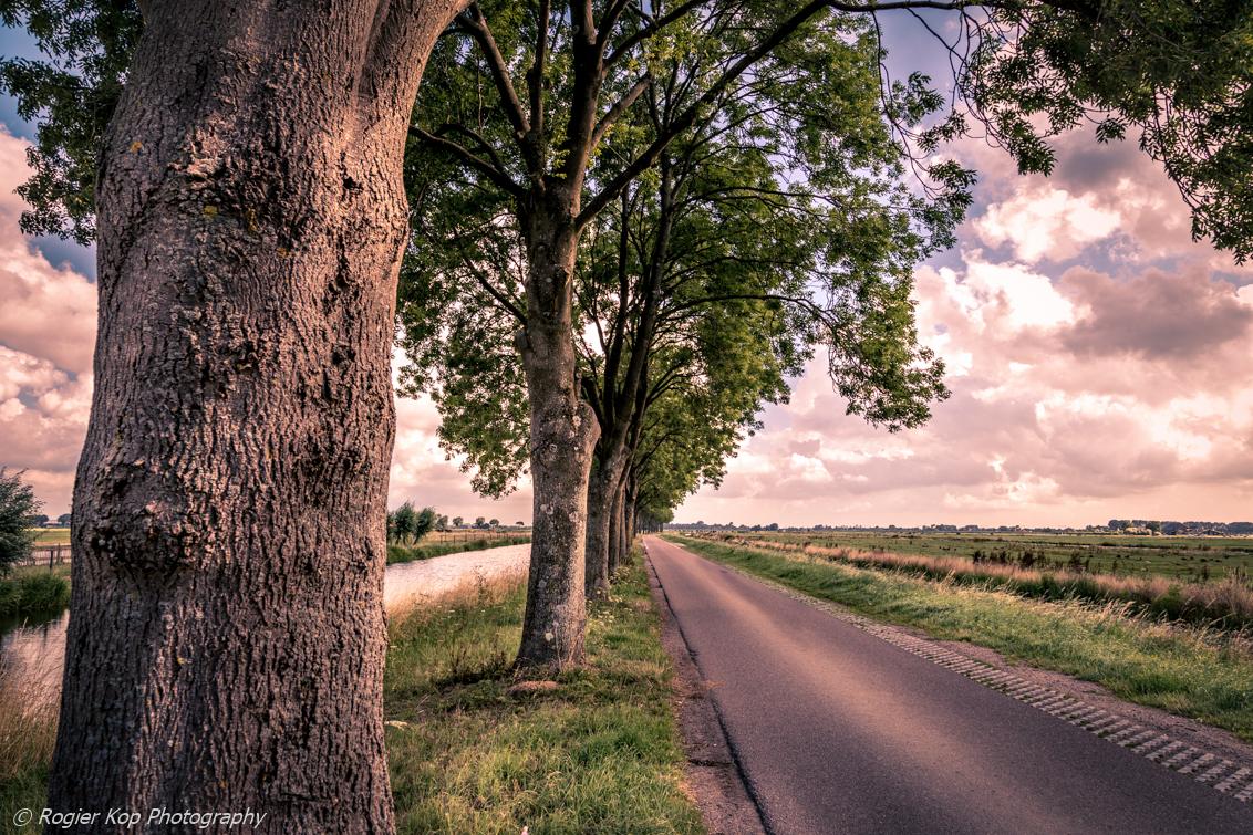 Drukweg