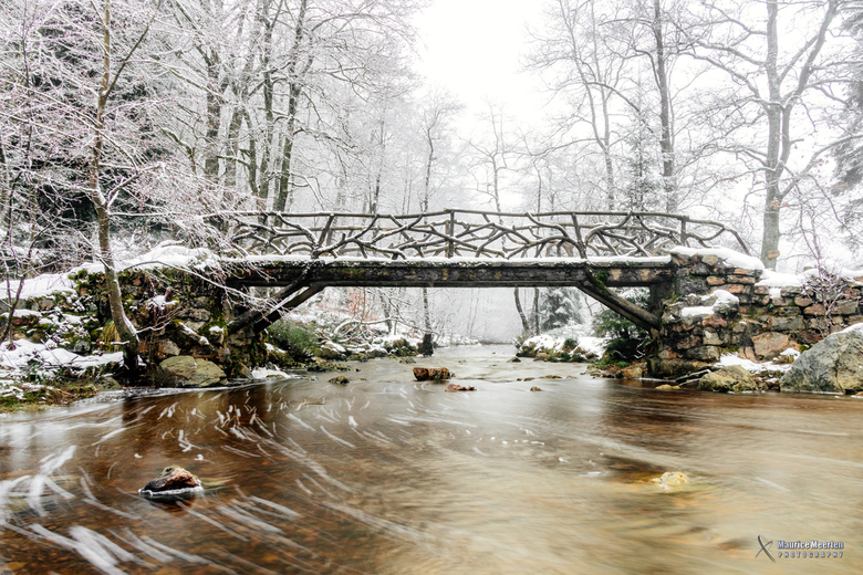 Bruggetje in de sneeuw