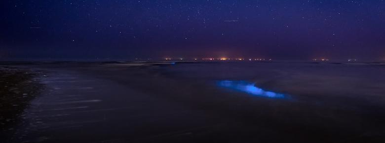Zeevonk - Gisternacht op pad naar Katwijk aan Zee om zeevonk te spotten. Heel bijzonder om golven licht te zien geven! Daarnaast een zeer vermakelijke