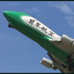 Groene Sperzieboon